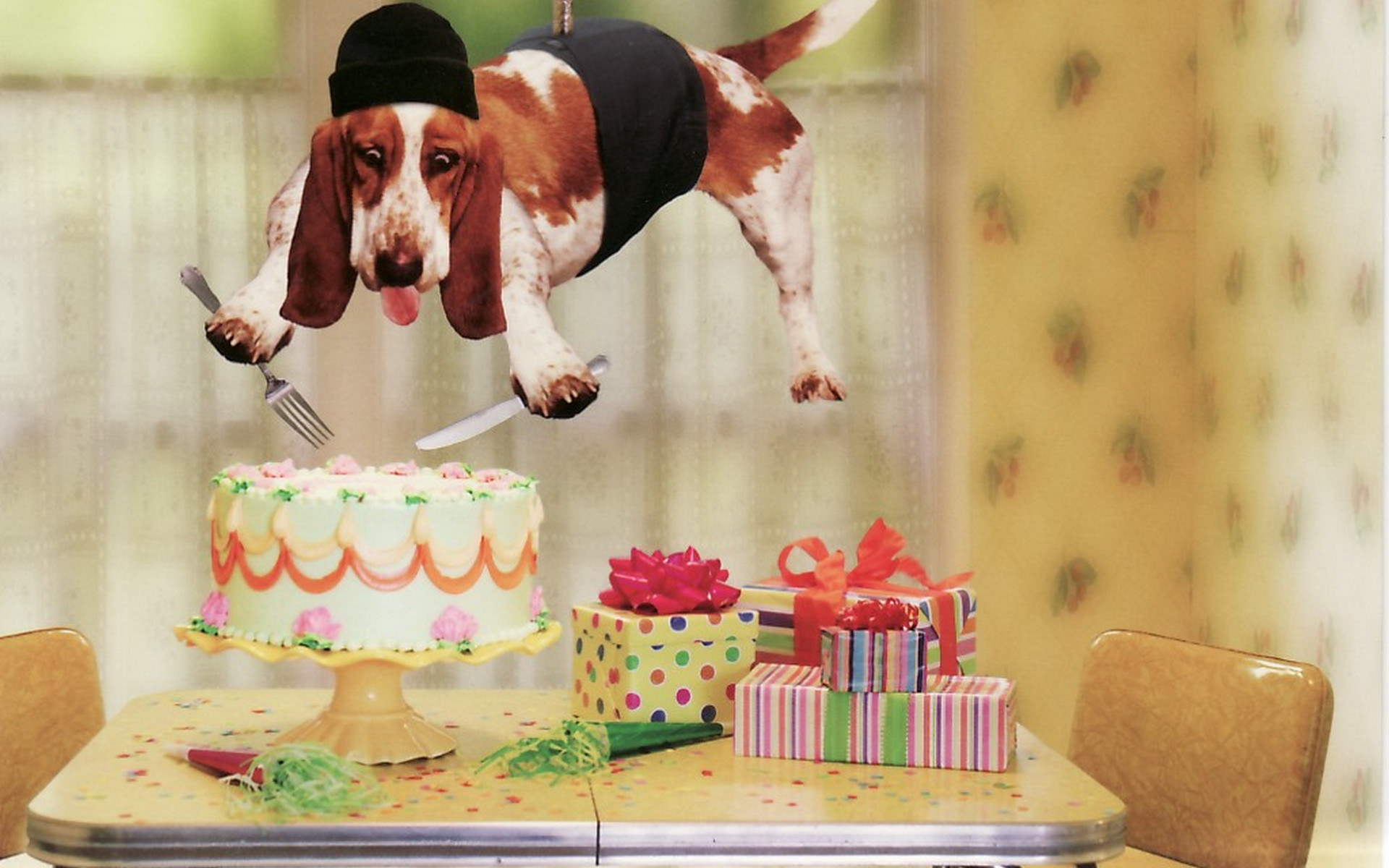 Пожелания на день рождения креативное