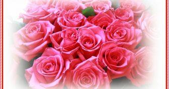 Красивые картинки С Днем Рождения Полина (33 фото)