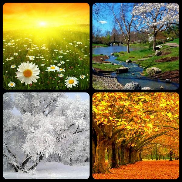 картинки времен года осени зимы лесть