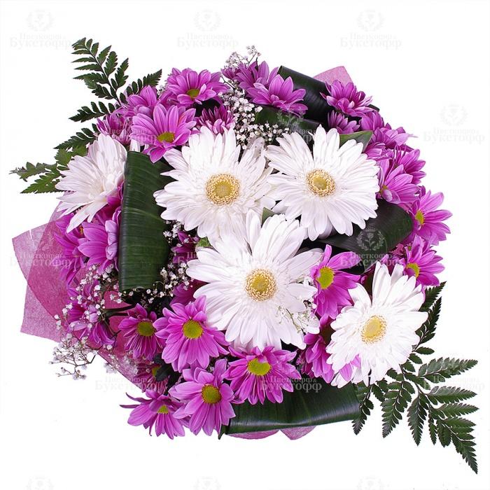 Букет герберы и хризантемы в картинках
