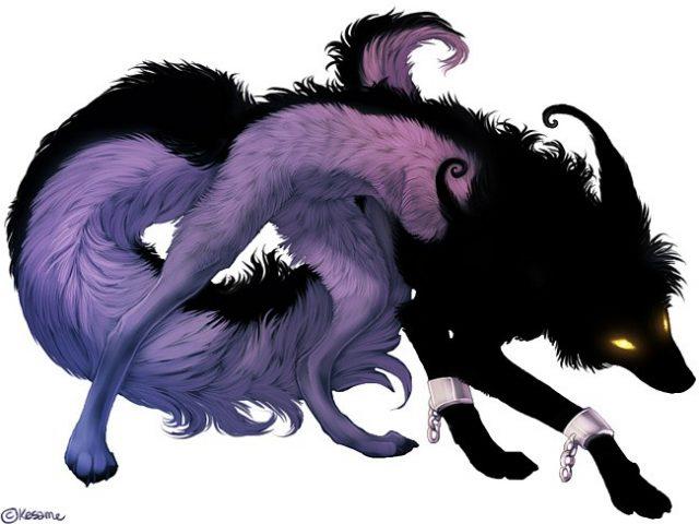 фото волков аниме