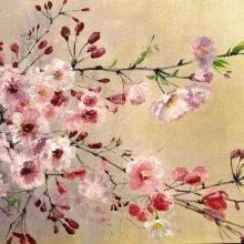 Картинки ветка сакуры (31 фото)