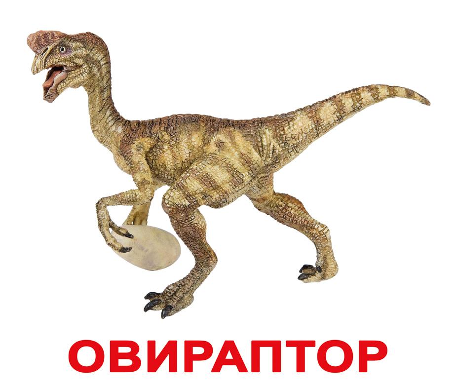 Картинки всех динозавров