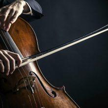 Картинки виолончель (16 фото)