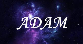 Смешные картинки поздравления с днем рождения Адам (17 Фото)