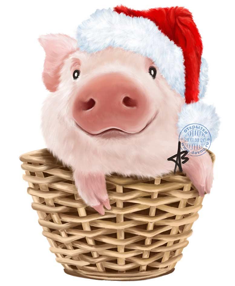 Поздравления символ года свинья