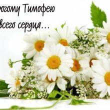 Картинки Именины Тимофея (14 фото)