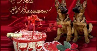 Красивые картинки с Днем Святого Валентина (день влюбленных) (35 фото)