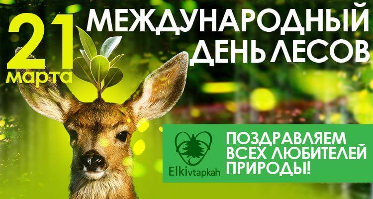 Международный день леса открытки, днем влюбленных