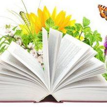 Красивые картинки с Днем экологических знаний 2019 (10 фото)