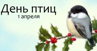 Красивые картинки с Международным днем птиц 2019 (19 фото)