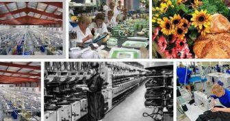 Красивые картинки с Днем работников местной промышленности в Украине (10 фото)