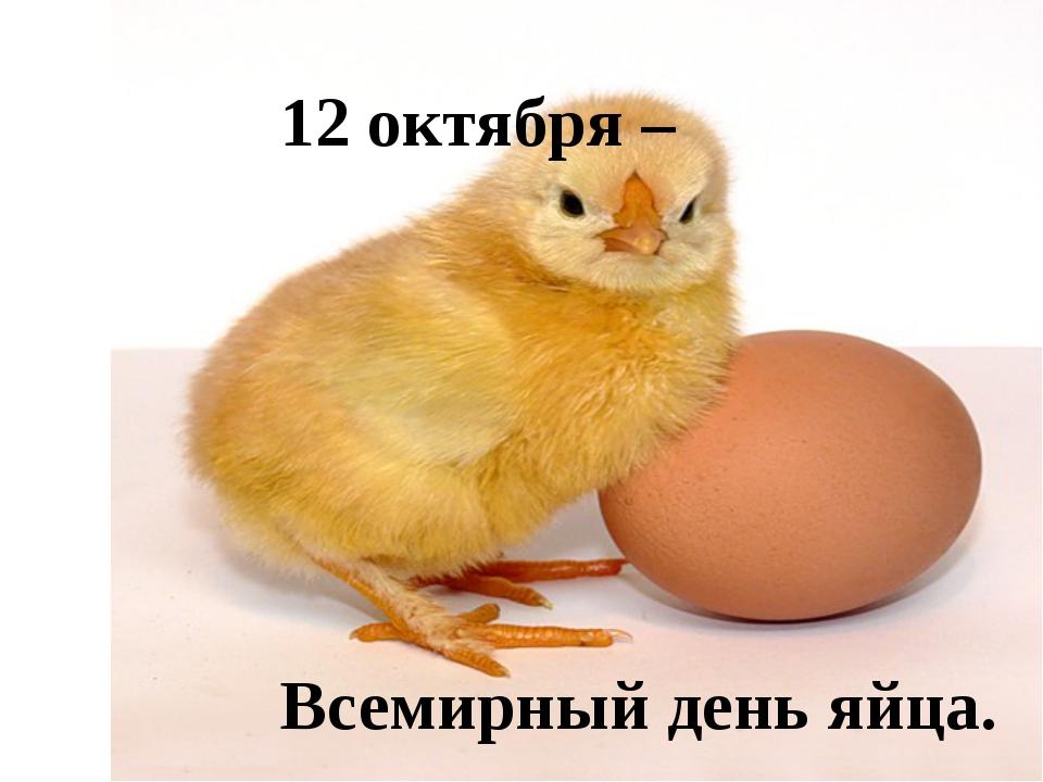 Картинки день яйца прикольные