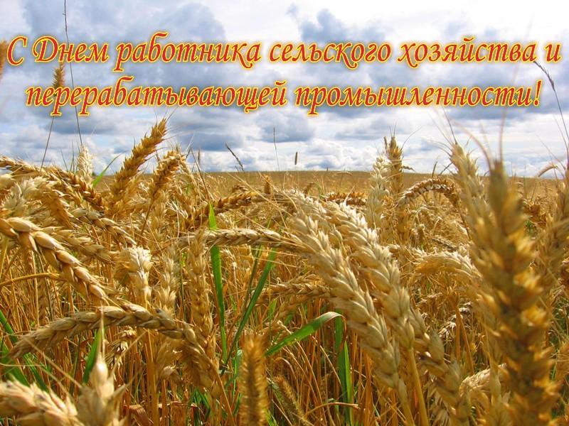 Открытка день сельского хозяйства и перерабатывающей промышленности, размышления жизни любви