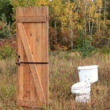 Смешные картинки с Всемирным днем туалета 2019 (15 фото)