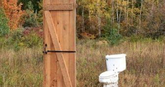 Смешные картинки с Всемирным днем туалета 2020 (19 фото)