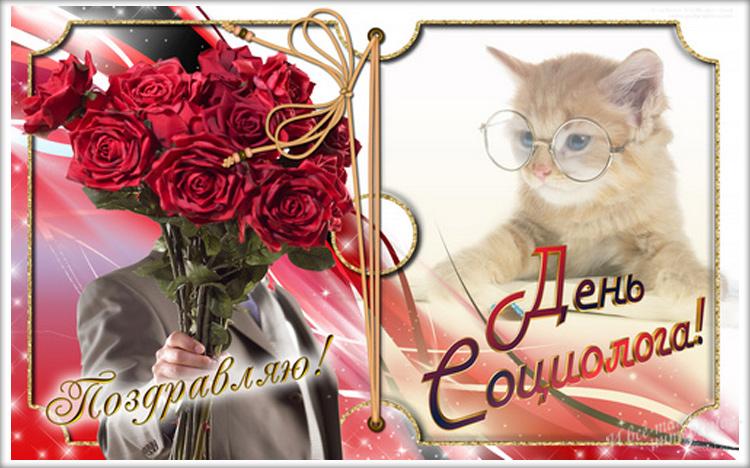 С днем социолога открытки, котенок картинках