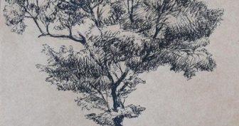 Рисунки черной ручкой для срисовки (60 фото)