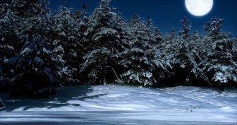 Красивые картинки с Днем зимнего солнцестояния 2021 (35 фото)