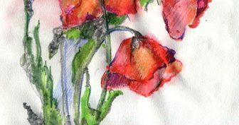 Рисунки акварелью для срисовки (39 фото)
