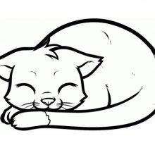 Рисунки карандашом для срисовки кошек для детей (26 фото)