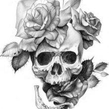 Картинки для срисовки черепа (28 фото)