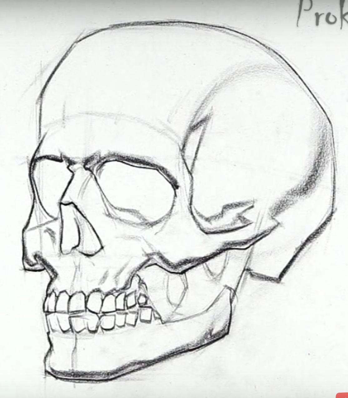 Прикольные рисунки черепов карандашом, открытка открытки
