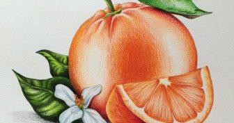 Рисунки цветными карандашами для срисовки (31 фото)