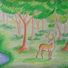 Рисунки природы для срисовки (22 фото)