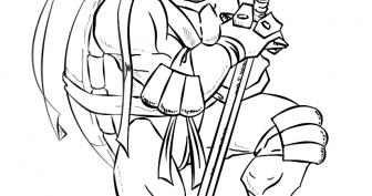 Рисунки для срисовки Черепашки Ниндзя (15 фото)