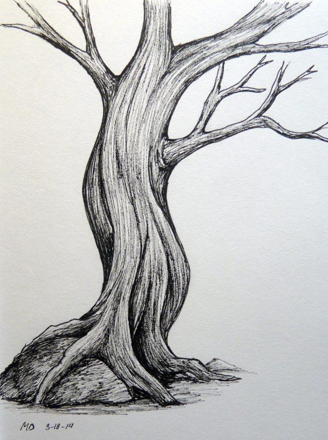 скромный тихий рисунок дерева интерпретация фото детальная