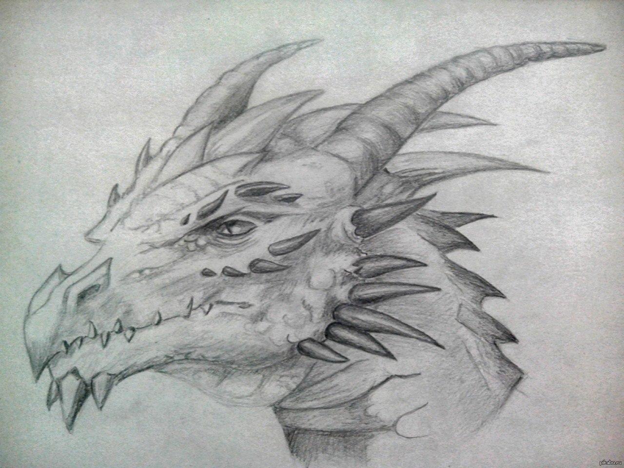 Картинки нарисованных карандашом драконов