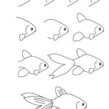 Картинки рыбок для срисовки (25 фото)