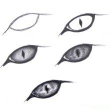 Срисовки карандашом поэтапно (23 фото)