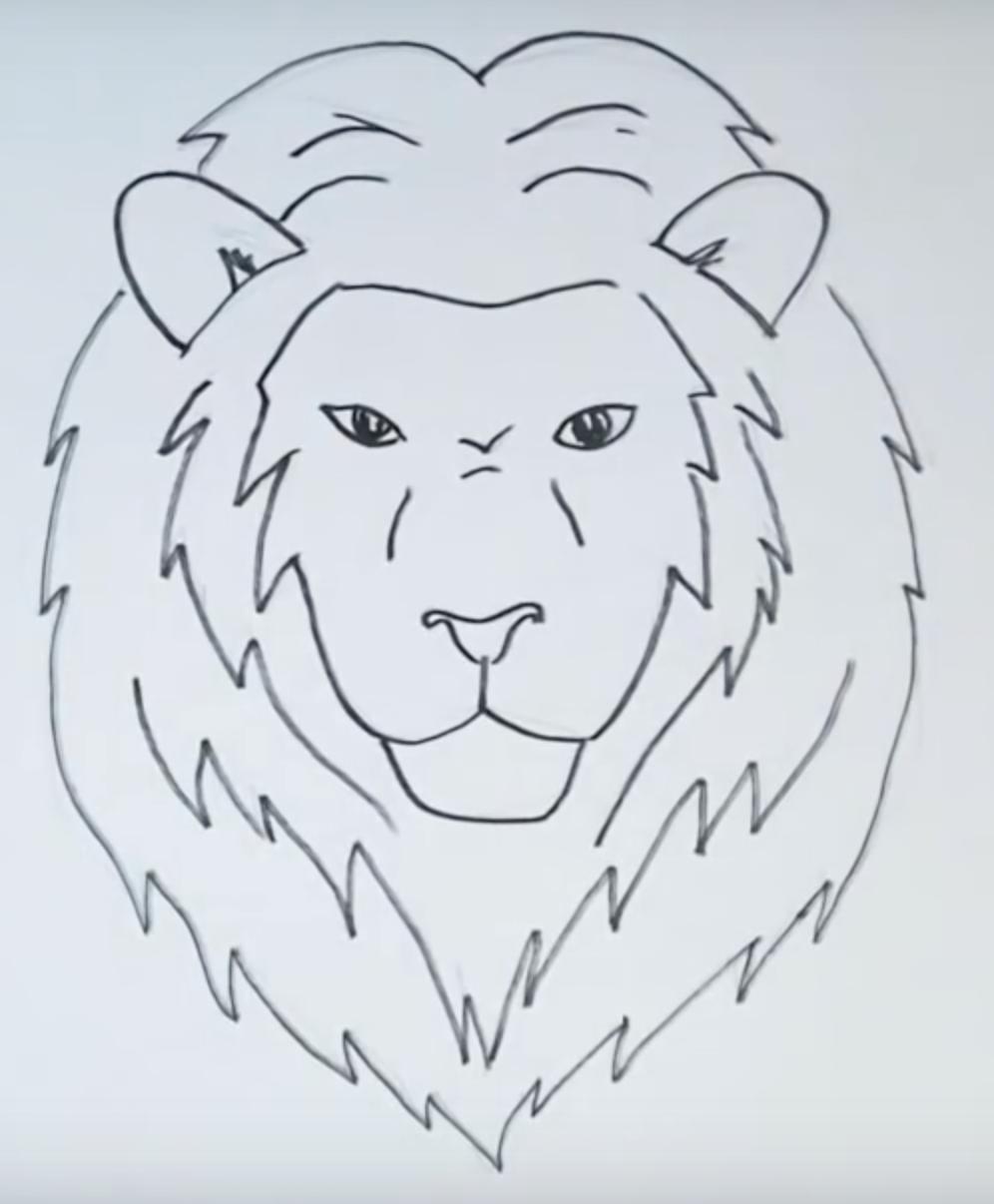 Картинки как нарисовать льва карандашом