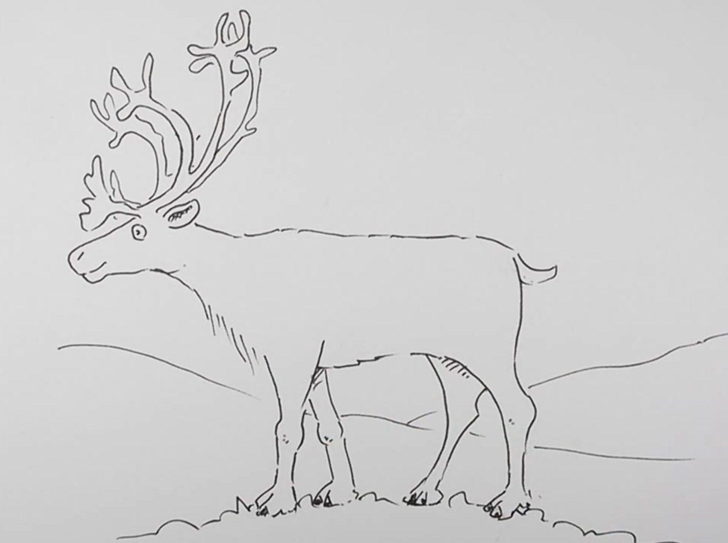 Картинки карандашом оленята