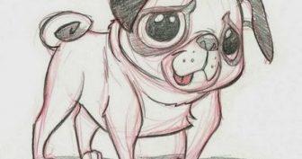 Рисунки мопсов для срисовки (22 фото)
