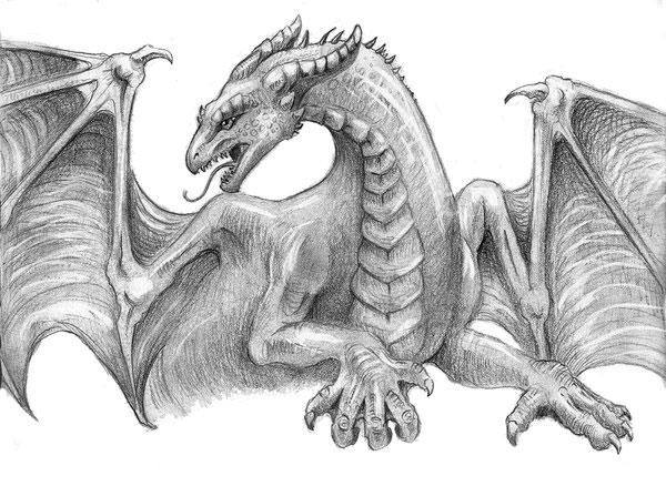 Картинки драконы карандашом для срисовки (33 фото ... Цветной Рисунок Карандашами