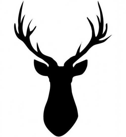 Голова оленя картинка для срисовки