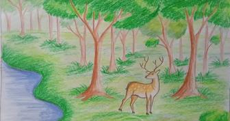 Легкие рисунки для срисовки природы (26 фото)
