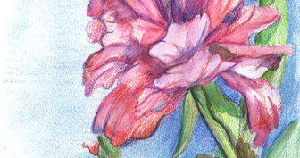 Рисунки для срисовки пастелью (33 фото)