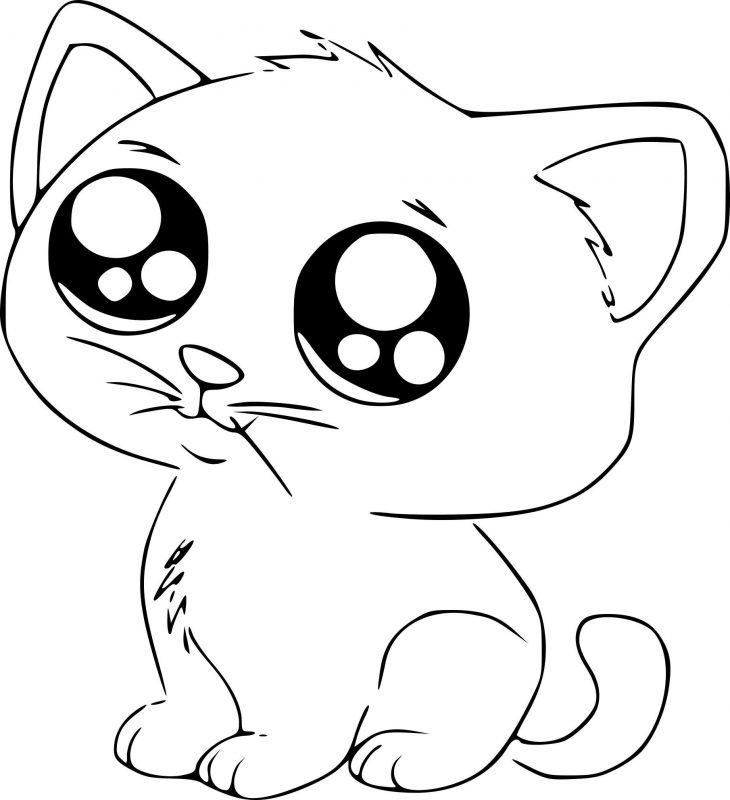 Открытки днем, котята рисунок картинки