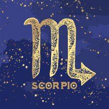 Рисунки для срисовки знаки зодиака скорпион (15 фото)