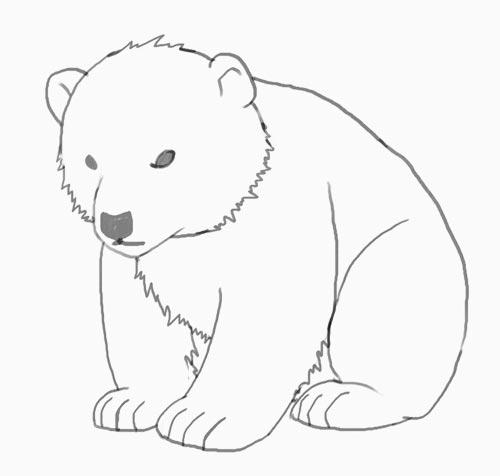 медведь рисунки карандашом для начинающих одно поколение
