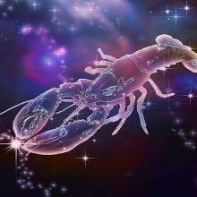 Рисунки для срисовки знаки зодиака рак (19 фото)