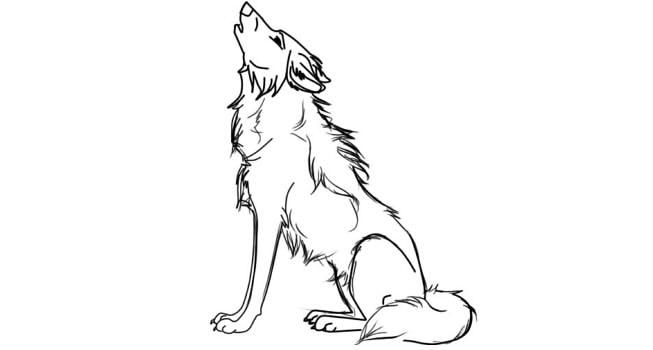 Раскраска волк прикольный, день