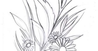 Рисунки ромашки карандашом для срисовки (30 фото)
