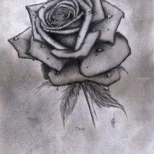 Рисунки для срисовки букет роз (31 фото)
