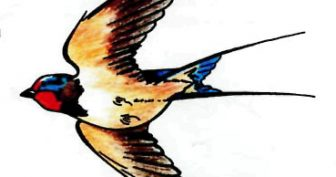 Рисунки карандашом летящая птица (30 фото)