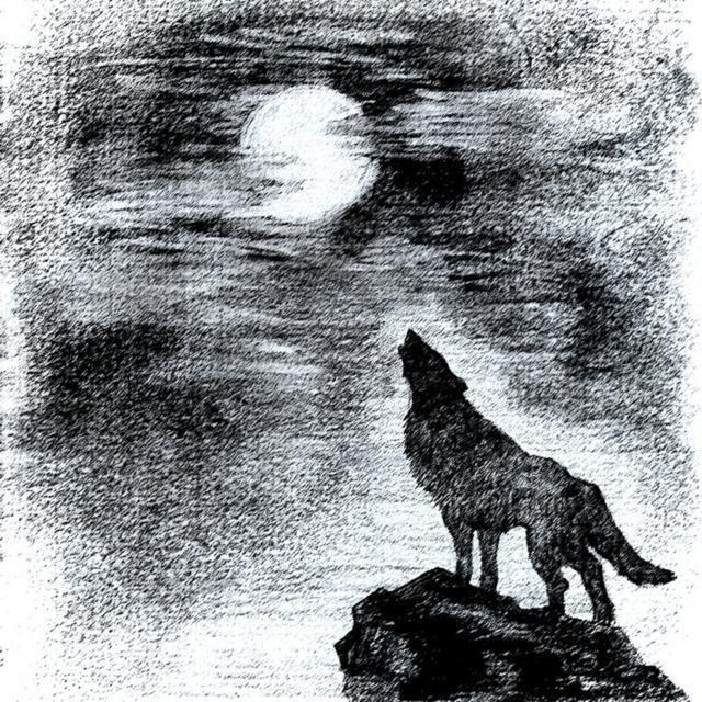 Рисунки карандашом волк воет на луну (28 фото ...